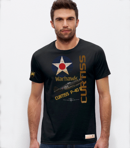 Camiseta militar Curtiss P-40B USAF